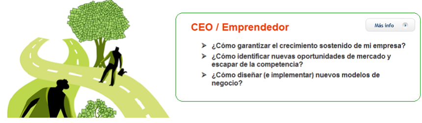 CEO Emprendedor