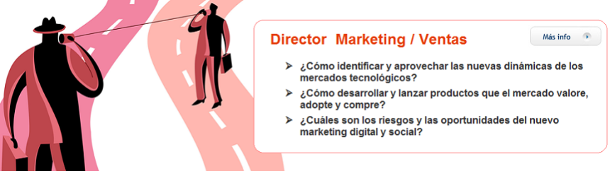 Director Marketing Ventas