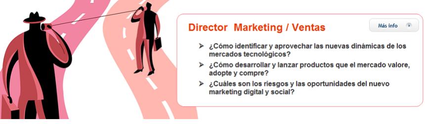 Director Marketing Ventas