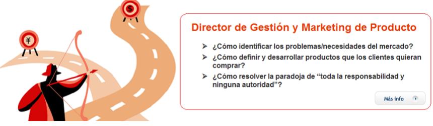 Director Gestión Marketing Producto