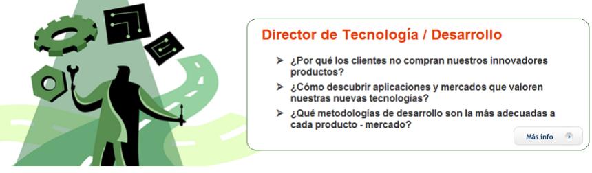 Director Tecnología Desarrollo Ingeniería
